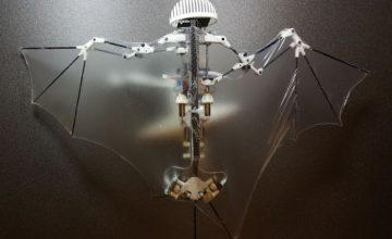 bat-bot_2-robotdenevér